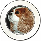 Blenheim King Charles Spaniel Car Tax Disc Holder New Animal, Ref:AD-SKC1T