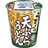 マルちゃんうまいつゆ 天ぷらうどん68g×12食