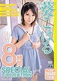 葵こはる 8時間 SPECIAL COLLECTION [DVD]