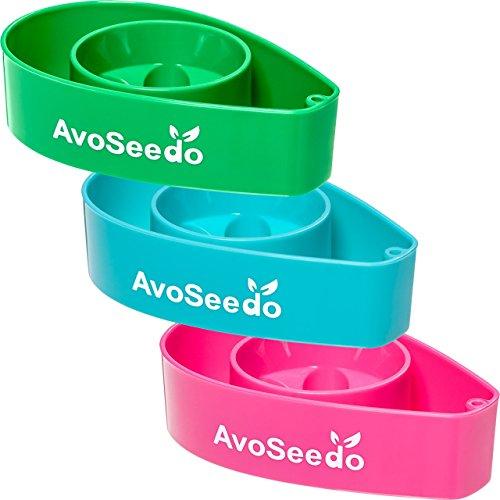 avoseedo-grow-your-own-avocado-tree-3-pack-green-blue-pink