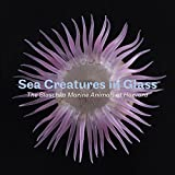 img - for Sea Creatures in Glass: The Blaschka Marine Animals at Harvard (English and German Edition) book / textbook / text book