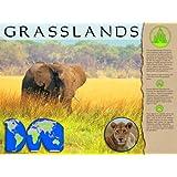 Grasslands Biome Poster