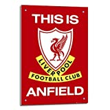 Iposters Liverpool Fc Poster This Is Anfield Float Mounted - 90 X 60cms (approx 36 X 24 Inches)