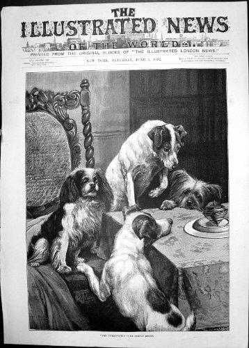 Tabella 1892 di Pranzo Antica dei Cani Di Piccola Taglia della Cima di Ronzio della Stampa Fanny Lunatica