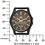 U.S. Polo Assn. Men's US5164 Brown Dial Brown Crocodile Strap Watch