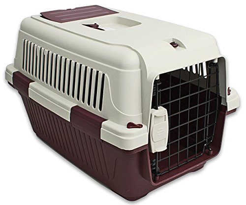 Pet Carrier 22.5 Inches Hard Sided Purple