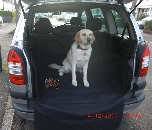heavy-duty-car-boot-protective-waterproof-liner-cover-fit-kia-sorento