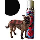 PetPaint Pet Hair Spray, 5-Ounce, Rescue Red