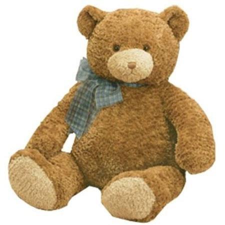 Dylan 16'' Plush Teddy Bear
