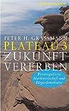 Plateau 3 Zukunft vererben: Werteregulierte Marktwirtschaft und Bürgerdemokratie (German Edition)
