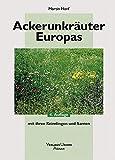 Image de Ackerunkräuter Europas: Mit ihren Keimlingen und Samen