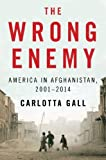 img - for The Wrong Enemy: America in Afghanistan, 2001-2014 Hardcover April 8, 2014 book / textbook / text book
