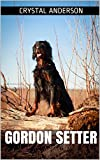 Gordon Setter: How to Own and Care for Your Gordon Setter