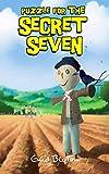 Enid Blyton Secret Seven: 10: Puzzle For The Secret Seven