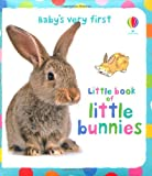 Kate Fearn Little Book of Little Bunnies (Baby's Very First Books) (Baby's Very First Little Books)