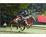 Photographic Print of Horse Back Archery Competition (Yabusame)