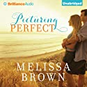 Picturing Perfect (       UNABRIDGED) by Melissa Brown Narrated by Kate Reinders