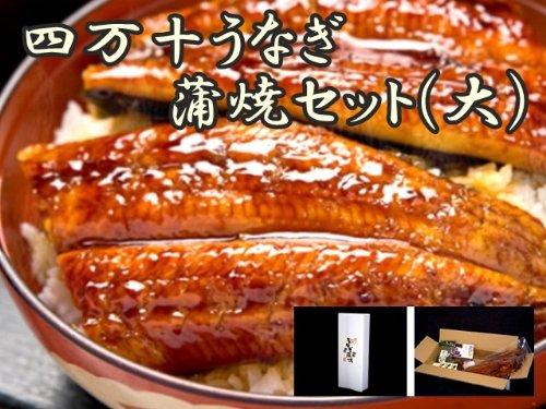 四万十うなぎ 蒲焼セット大(冷凍)