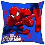 Marvel Spiderman Kissen 40x40cm Wasch...