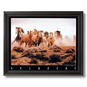 Wild Horse Running Stampede On Prairie Picture Black Framed Art Print