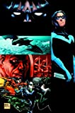 img - for Nightwing: Freefall (Nightwing (Graphic Novels)) book / textbook / text book