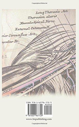 Anatomy of the state rothbard