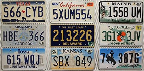 9er-kennzeichen-set-lot-us-nummernschilder-kalifornien-kansas-florida-texas-wyoming-maine-delaware-m