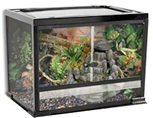 reptile exotics supplies reptology glass