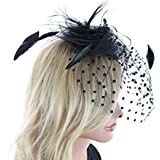 Always a Lady Fascinator Hair Clip Hat with Flowers Feathers Polka Dot Net and Veil