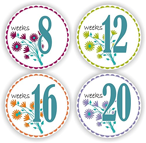 Baby Bump Stickers Pregnancy Stickers Photo Props Stickers Flower Baby Bump Stickers