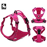 PetsUp Imported Ultra Premium Soft, Front Range No-Pull Dog Harness Easy Walk Dog Travel Pet Vest With Handle And Velcro Fitting TLH5651 (Large, Fuschia)