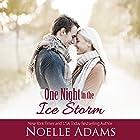 One Night in the Ice Storm Hörbuch von Noelle Adams Gesprochen von: Carly Robins