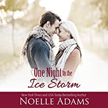 One Night in the Ice Storm Audiobook by Noelle Adams Narrated by Carly Robins