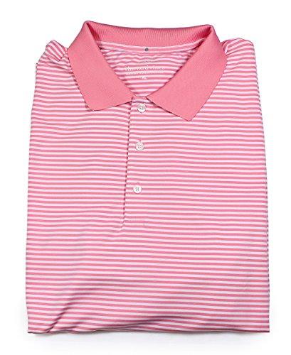 Vineyard Vines Tuckahoe Stripe Golf Polo W/O Strawberry