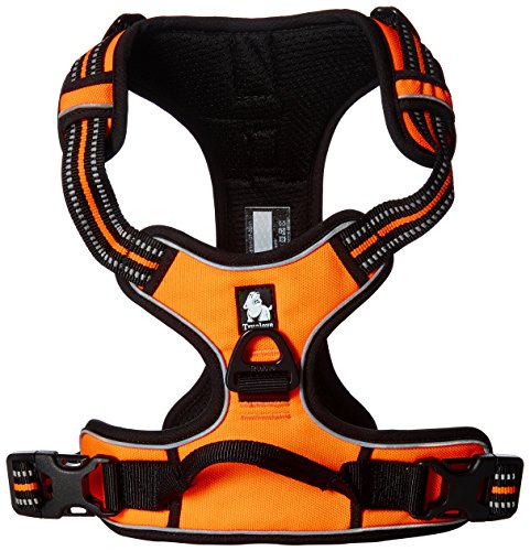 front-range-dog-harness-harness-no-pull-3m-reflective-stitching-for-improved-night-time-visibility-3
