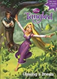 Chasing a Dream (Disney Tangled) (Hologramatic Sticker Book)