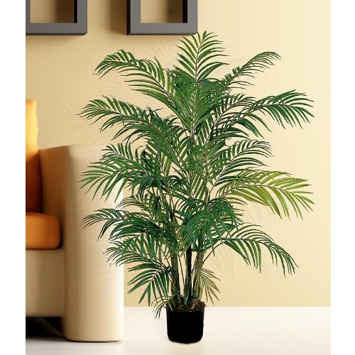 Areca Silk Palm Tree 4′