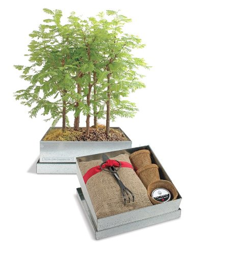Bonsai Redwood Forest hp 856a low price anemometer wind flowmeter with wind speed range 0 3 45m s
