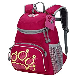 Jack Wolfskin Kinder Rucksack Little Joe, Azalea Red, 31 x 26 x 23 cm, 11 Liter, 26221-2081