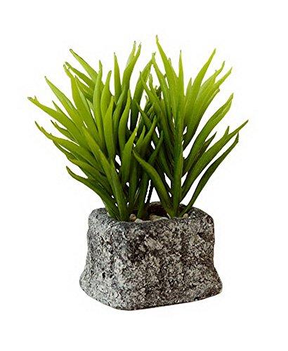 The Artificial Miniature Potted Plant Home Decoration [J]
