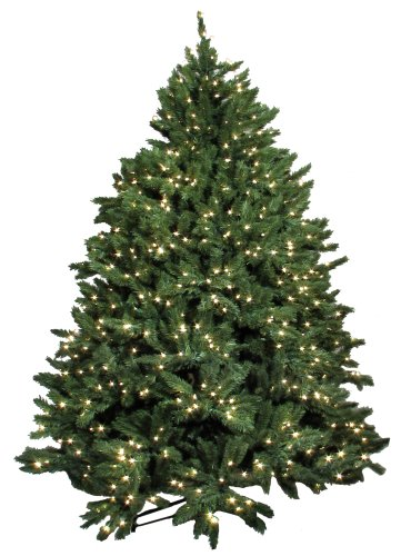 Buy Good Tidings Town And Country Frazier Artificial