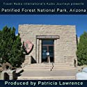 Petrified Forest National Park, Arizona: Audio Journeys Radio/TV Program by Patricia L. Lawrence Narrated by Patricia L. Lawrence