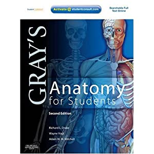 Gray's Anatomy for Students: With STUDENT CONSULT Online Access 2010 51lwHJbz2tL._SL500_AA300_
