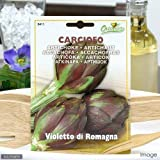 HORTUS イタリア野菜の種 アーティチョーク(カルチョーフィ)・バイオレット Art.411 家庭菜園