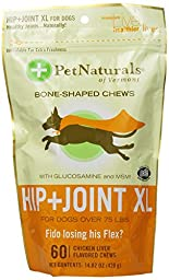 Hip & Joint XL chews (60 count)