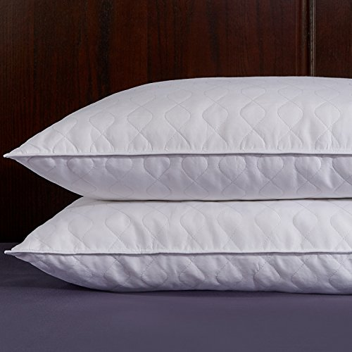 puredown-quilted-white-goose-feather-and-down-pillow-set-of-2-white-standard-queen-size