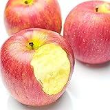 果物 ギフト りんご 糖度センサー サンふじ リンゴ 2.5kg ランキングお取り寄せ