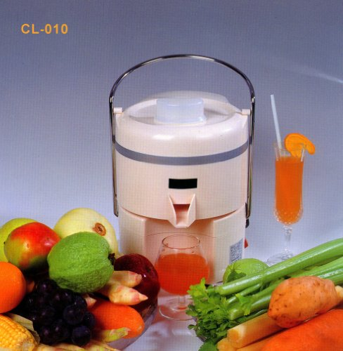 Best Juicers For The Price