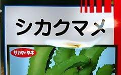 シカクマメ  サカタの四角豆種です