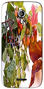 Snoogg autumn Designer Protective Back Case Cover For Micromax A117